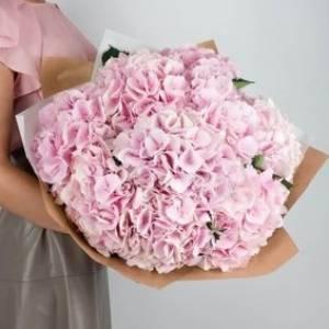 11 веток пышной розовой гортензии R704