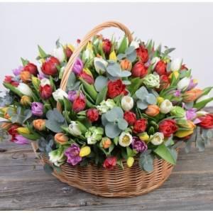 Корзина 151 разноцветный тюльпан с эвкалиптом R994