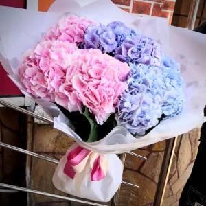 Букет 9 веток гортензии розовой и голубой с оформлением R722