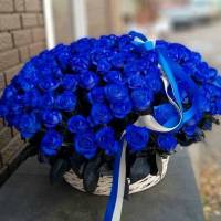 101 синяя роза с оформлением R1988