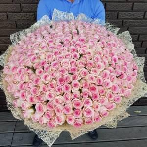 301 розовых роз, цветы в букете R922