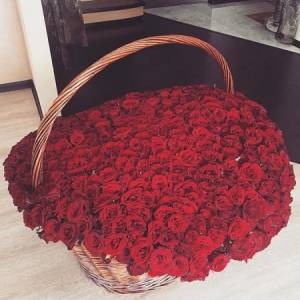 501 красная роза, цветы в корзине R926