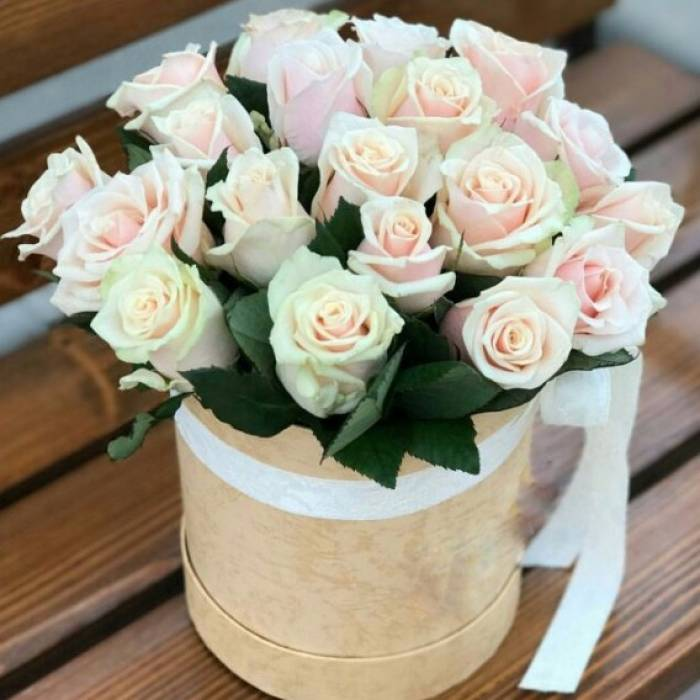 21 нежная роза в белой коробке R833