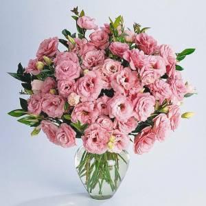 Букет 31 ветка розовой эустомы с лентами R622